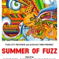 summeroffuzz_cover2