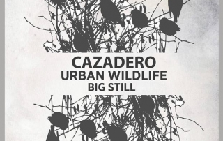 Cazadero, Urban Wildlife, Big Still at Viracocha