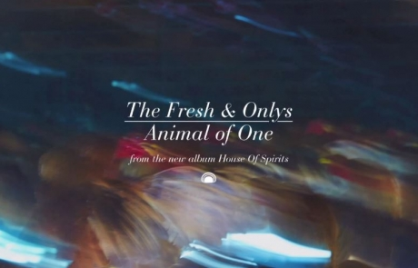 "The Fresh & Onlys release ""Animal Of One"" single"