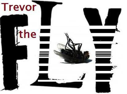 Trevor the Fly: weirdness brought to you by the suburbs