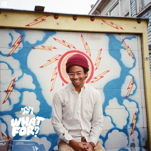 "SONG-FREUD: Toro Y Moi's ""Empty Nesters"""