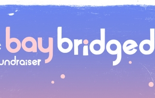 the bay bridged 2016 fundraiser slider