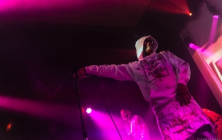 Dr. Octagon at The Independent, by Ian Young