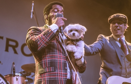Photos: Vintage Trouble at the Fillmore