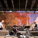 Bill Frisell at Hardly Strictly Bluegrass 2019, by Ria Burman